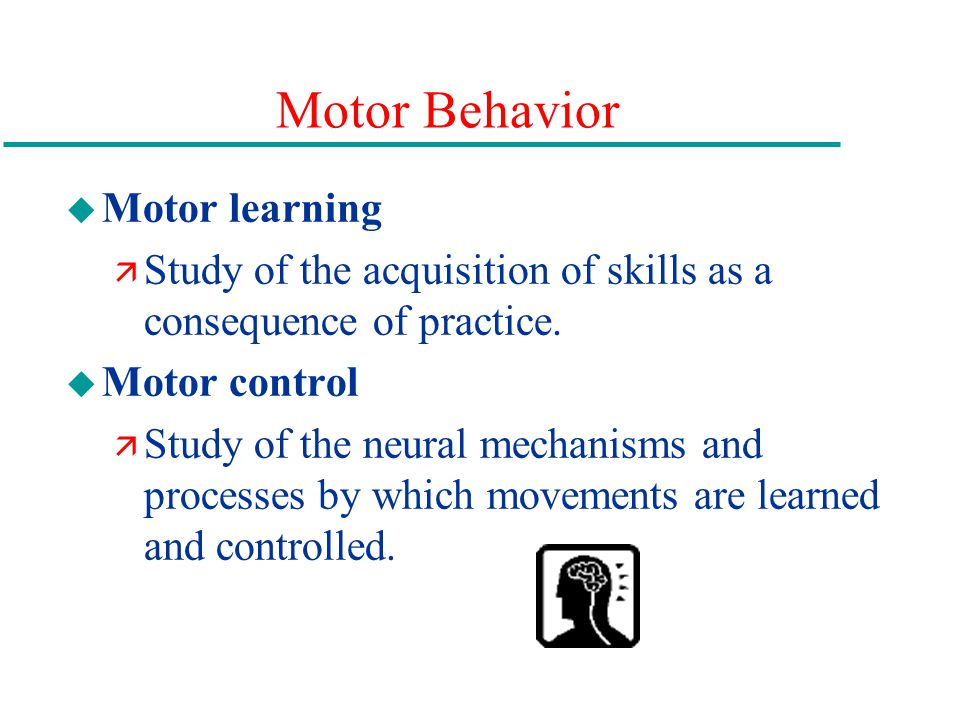 Motor Behavior u Motor learning ä Study of the acquisition of skills as a consequence of practice.