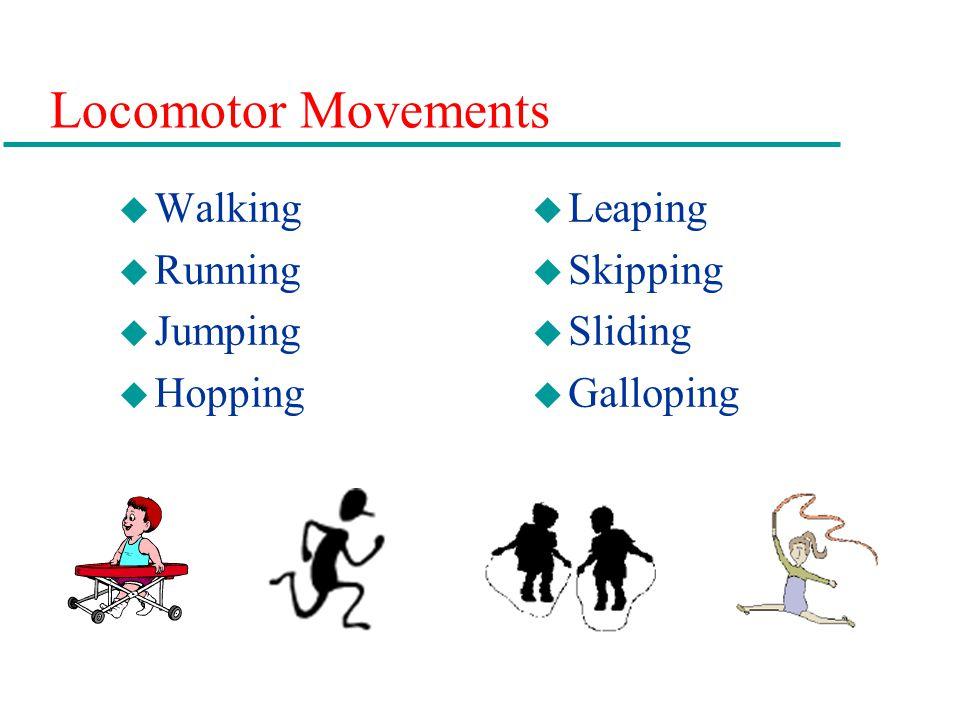 Locomotor Movements u Walking u Running u Jumping u Hopping u Leaping u Skipping u Sliding u Galloping