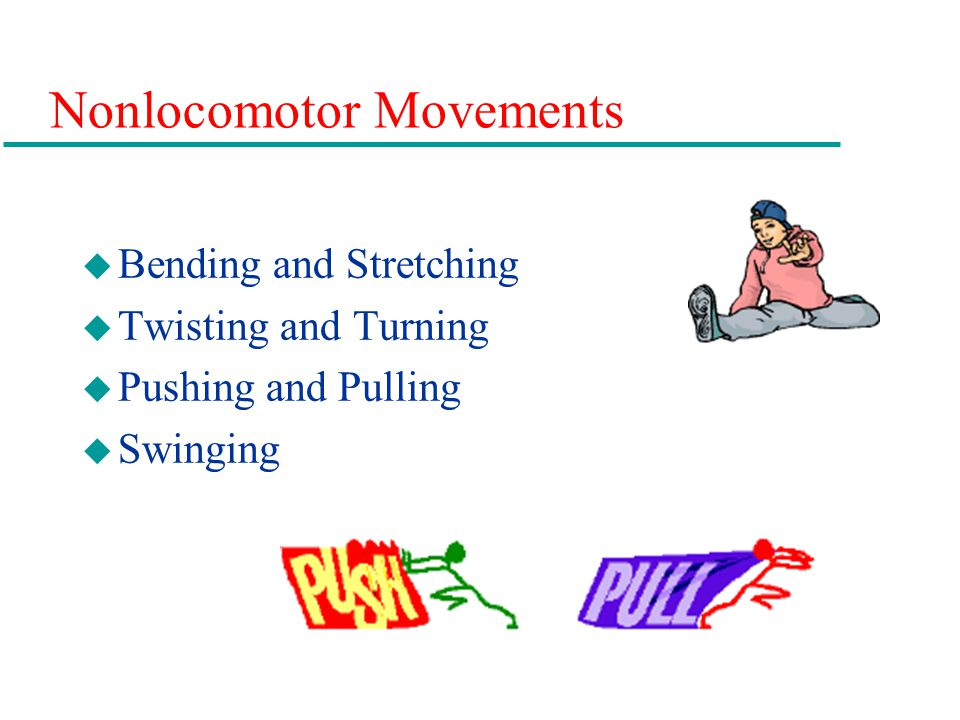 Nonlocomotor Movements u Bending and Stretching u Twisting and Turning u Pushing and Pulling u Swinging
