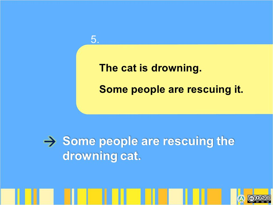 The cat is drowning. Some people are rescuing it. Some people are rescuing the drowning cat. 5.