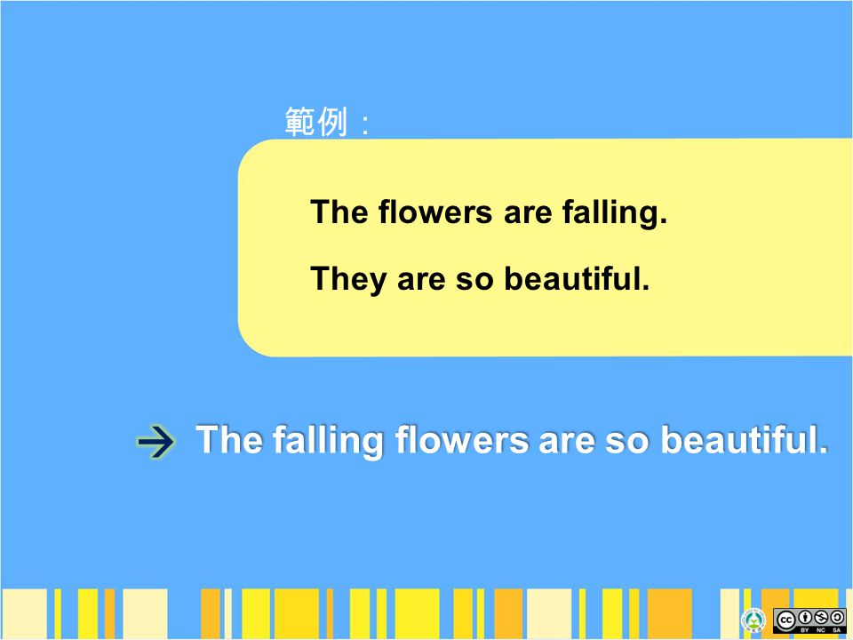 The flowers are falling. They are so beautiful. The falling flowers are so beautiful.