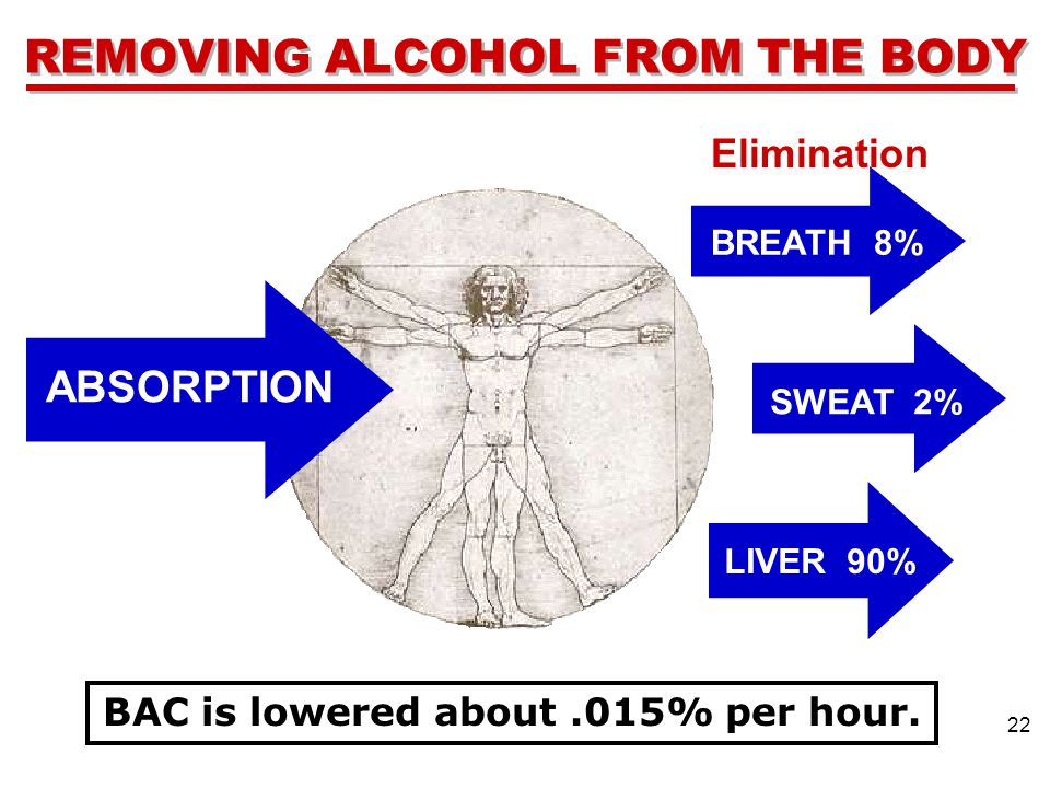 REMOVING ALCOHOL FROM THE BODY Elimination ABSORPTION 22 BAC is lowered about.015% per hour.
