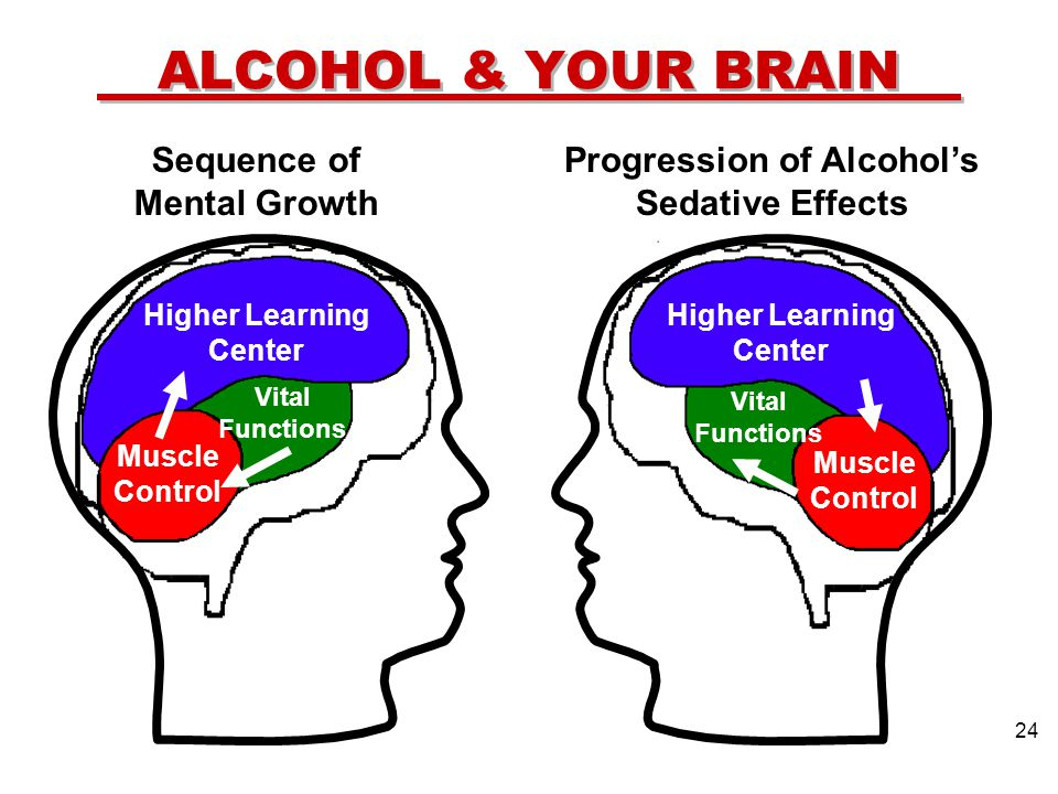 ALCOHOL & YOUR BRAIN Sequence of Mental Growth Progression of Alcohols Sedative Effects Higher Learning Center Vital Functions Muscle Control Higher Learning Center Vital Functions Muscle Control 24