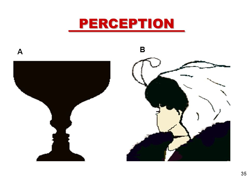 35 PERCEPTION A B