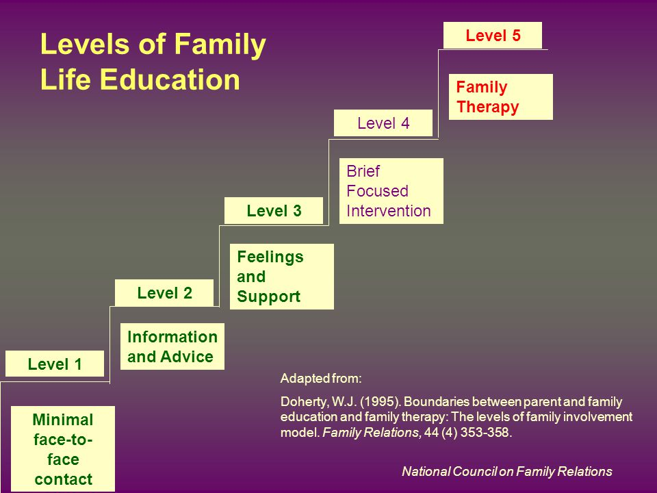 National Council on Family Relations Levels of Family Life Education Level 1 Minimal face-to- face contact Level 2 Information and Advice Level 3 Feel