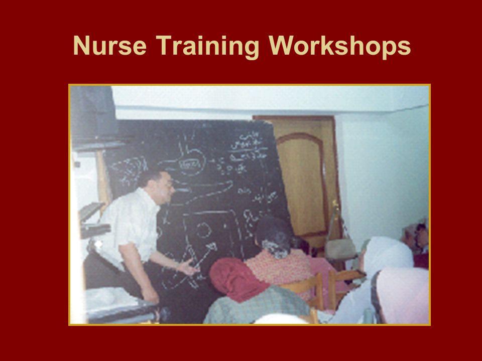 Nurse Training Workshops