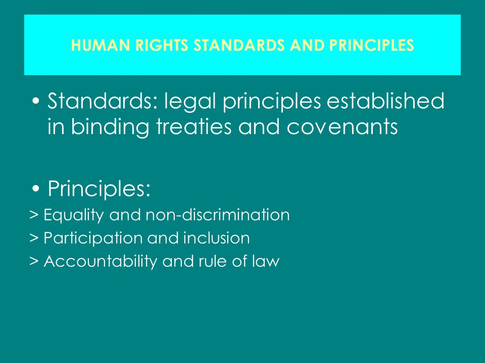 HUMAN RIGHTS STANDARDS AND PRINCIPLES Standards: legal principles established in binding treaties and covenants Principles: > Equality and non-discrimination > Participation and inclusion > Accountability and rule of law