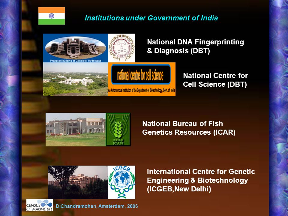 Institutions under Government of India National DNA Fingerprinting & Diagnosis (DBT) National Centre for Cell Science (DBT) National Bureau of Fish Genetics Resources (ICAR) International Centre for Genetic Engineering & Biotechnology (ICGEB,New Delhi) D.Chandramohan, Amsterdam, 2006