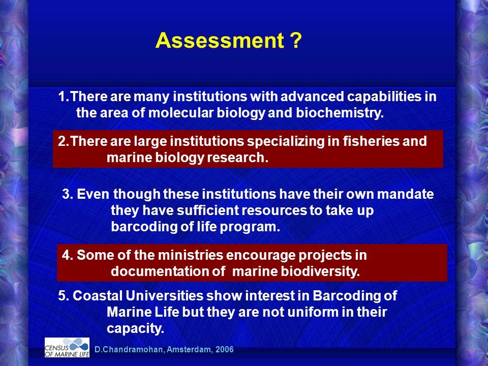 Assessment .