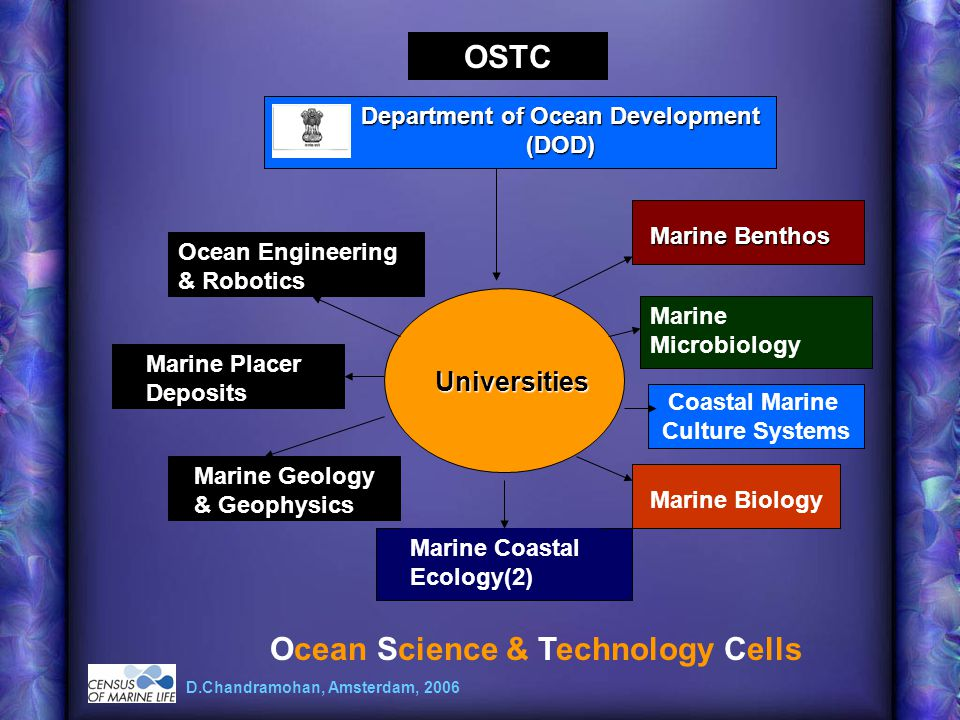 Department of Ocean Development (DOD) Universities Ocean Science & Technology Cells OSTC Marine Benthos Marine Microbiology Marine Biology Marine Coastal Ecology(2) Marine Geology & Geophysics D.Chandramohan, Amsterdam, 2006 Marine Placer Deposits Ocean Engineering & Robotics Coastal Marine Culture Systems