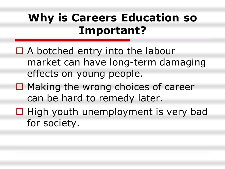 School and Careers Education 1 Schools need to cater for all their pupils.