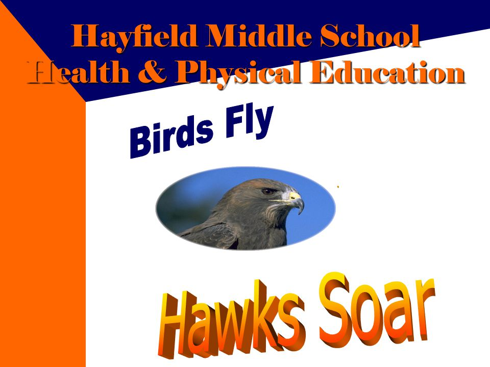 Hayfield Middle School Health & Physical Education