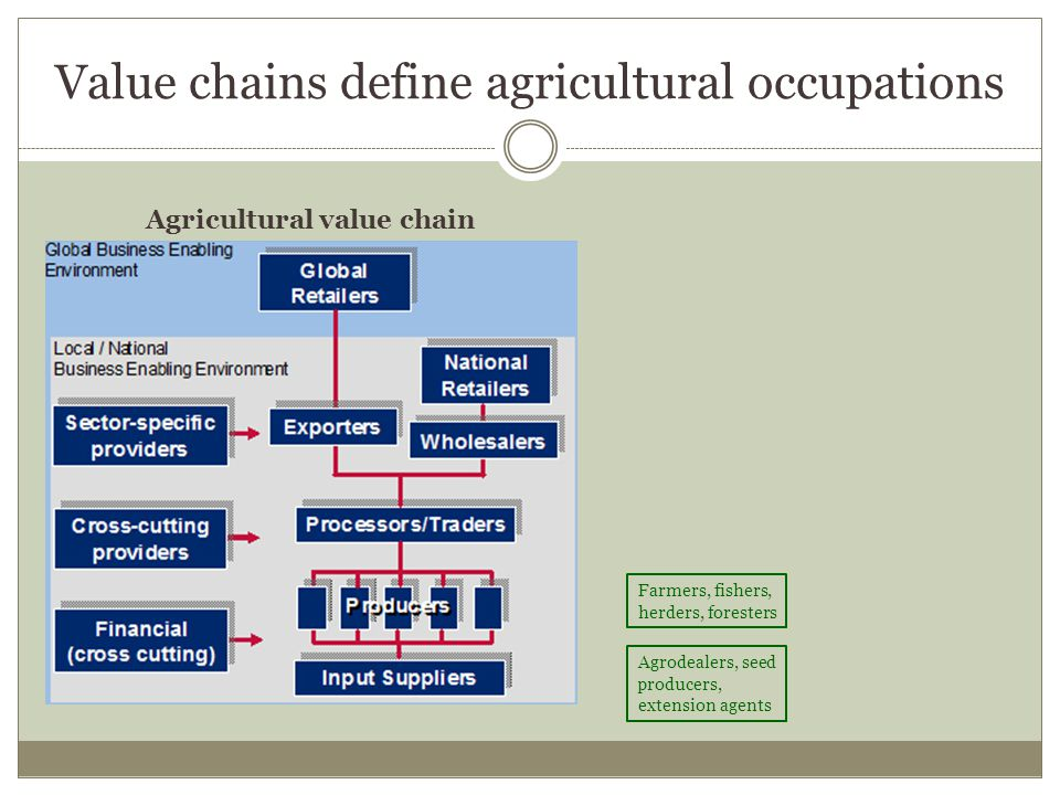 Value chains define agricultural occupations Agricultural value chain Farmers, fishers, herders, foresters Agrodealers, seed producers, extension agents Food processing and conservation for local markets