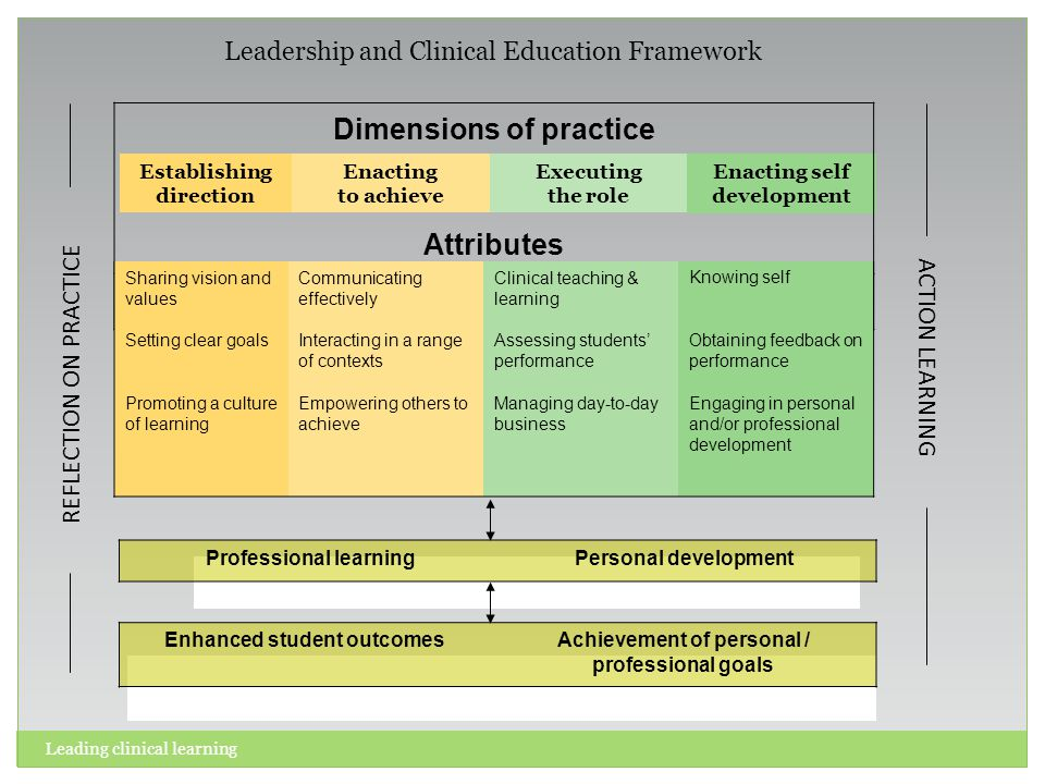 Establishing direction Enacting self development Executing the role Enacting to achieve Dimensions of practice Attributes Sharing vision and values Se