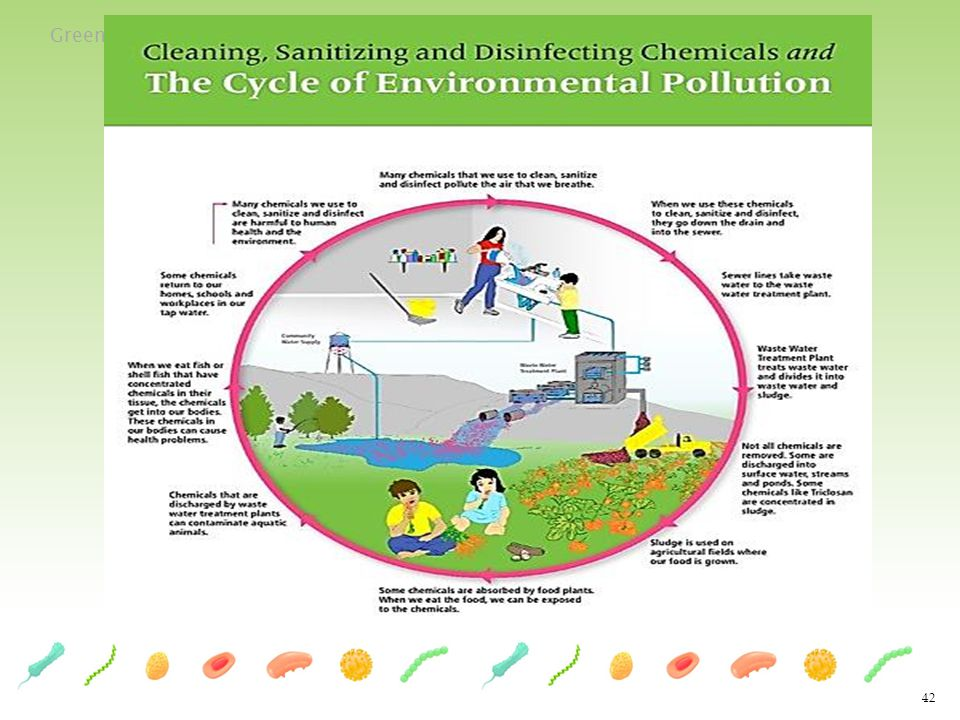 Green Cleaning Toolkit for Early Care and Education 42
