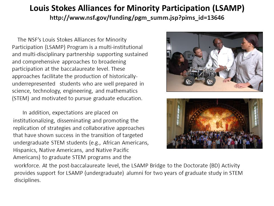 Louis Stokes Alliances for Minority Participation (LSAMP) http://www.nsf.gov/funding/pgm_summ.jsp pims_id=13646 In addition, expectations are placed on institutionalizing, disseminating and promoting the replication of strategies and collaborative approaches that have shown success in the transition of targeted undergraduate STEM students (e.g., African Americans, Hispanics, Native Americans, and Native Pacific Americans) to graduate STEM programs and the The NSFs Louis Stokes Alliances for Minority Participation (LSAMP) Program is a multi-institutional and multi-disciplinary partnership supporting sustained and comprehensive approaches to broadening participation at the baccalaureate level.
