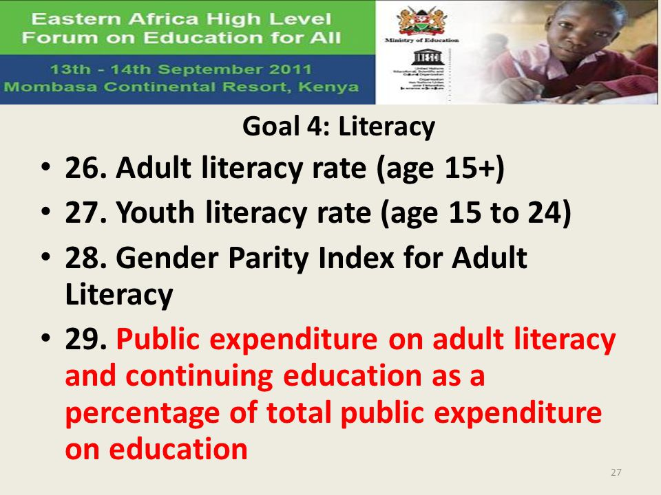 Goal 4: Literacy 26. Adult literacy rate (age 15+) 27. Youth literacy rate (age 15 to 24) 28. Gender Parity Index for Adult Literacy 29. Public expend