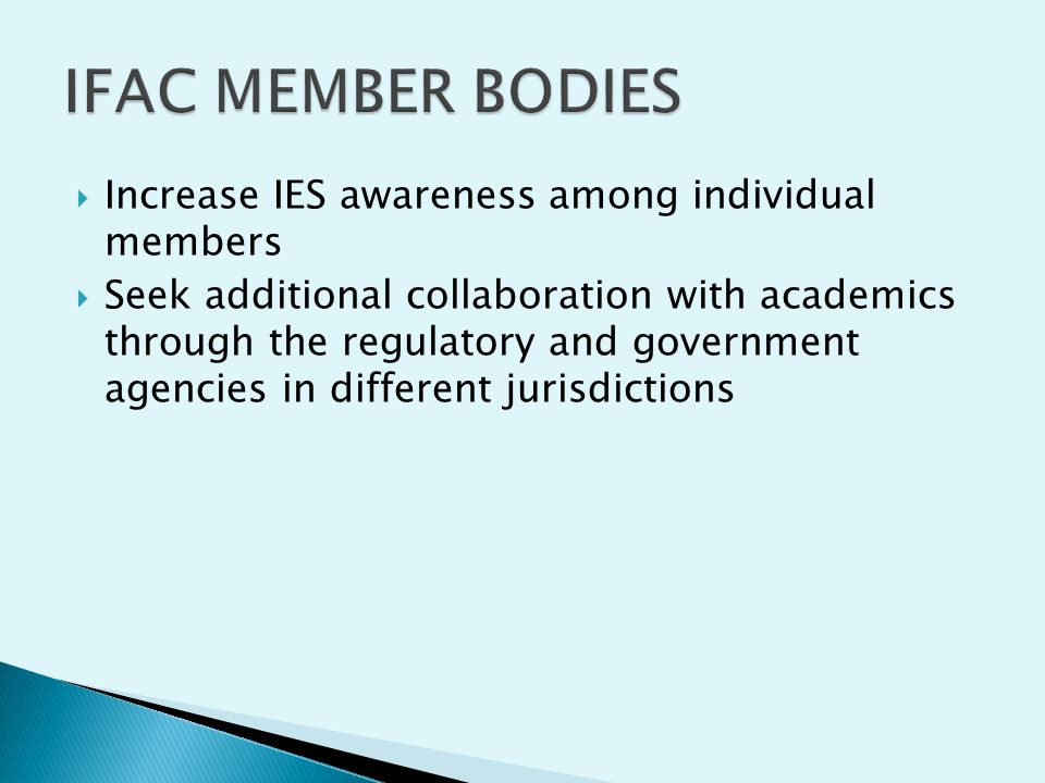 Increase IES awareness among individual members Seek additional collaboration with academics through the regulatory and government agencies in differe