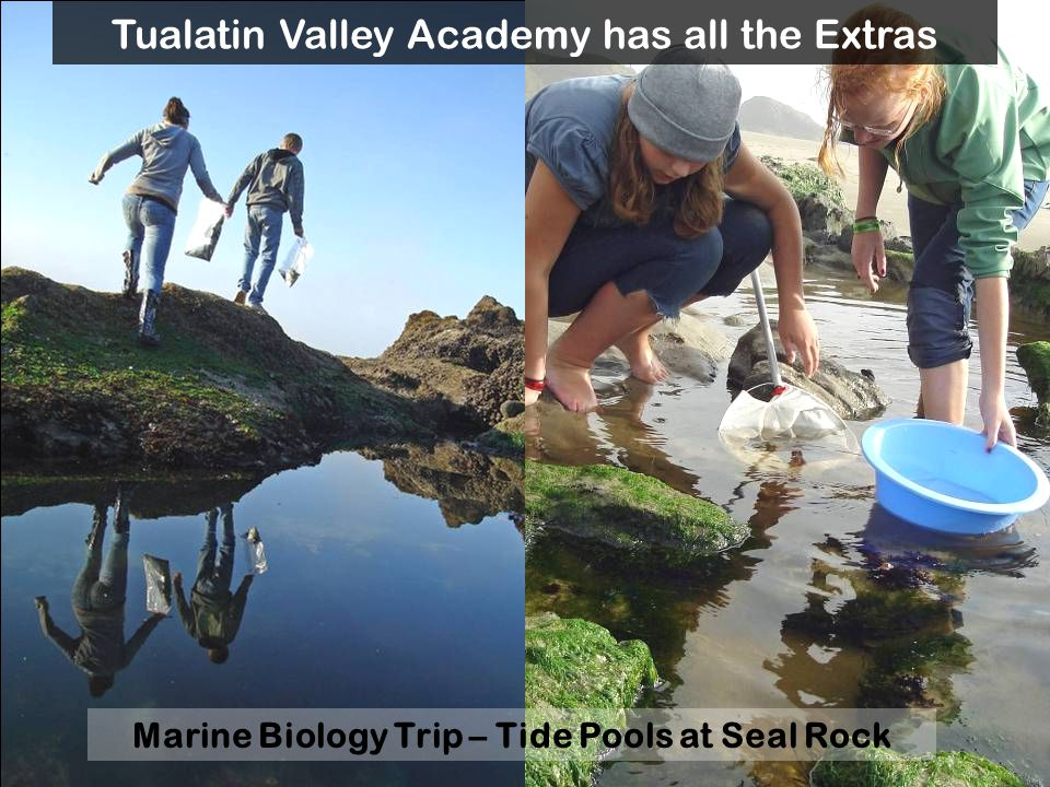 Marine Biology Trip – Surfing at Otter Rock Tualatin Valley Academy has all the Extras