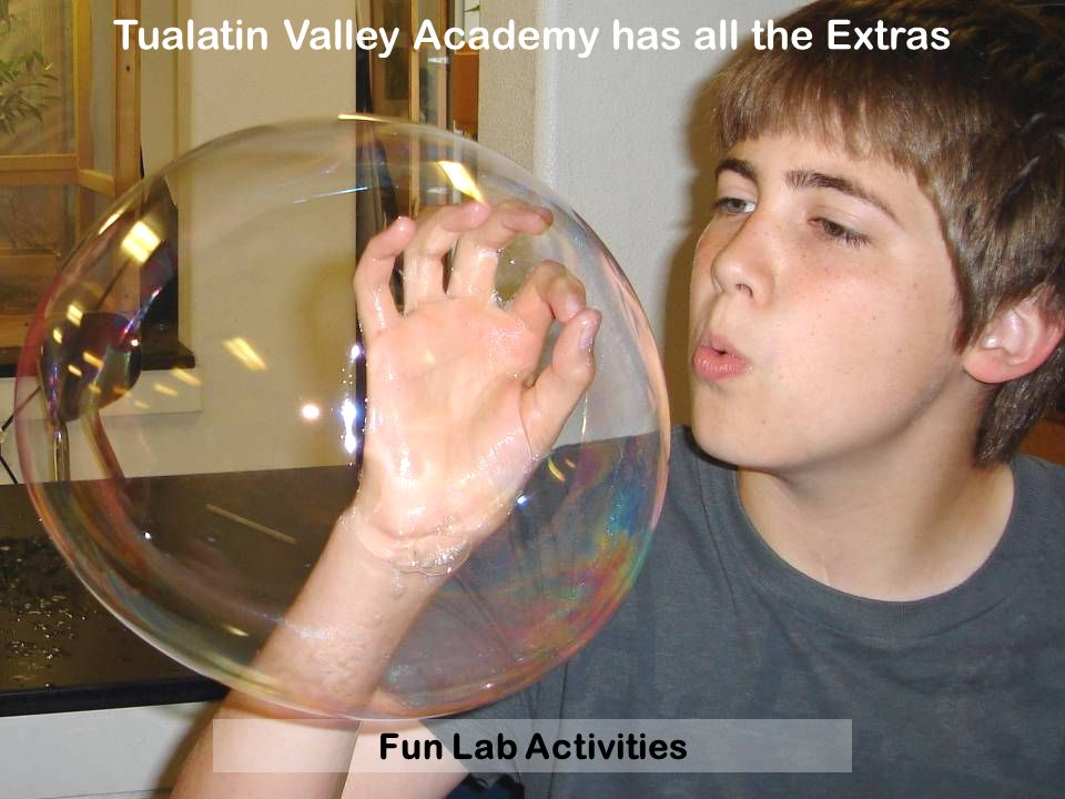 Fun Lab Activities