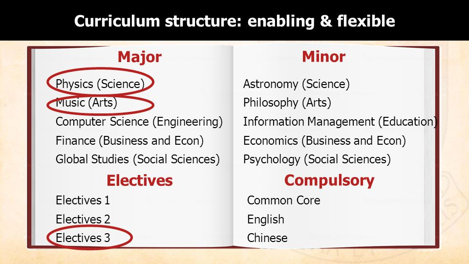 Learning Environment: Curriculum Structure Minor Physics (Science) Music (Arts) Computer Science (Engineering) Finance (Business and Econ) Global Studies (Social Sciences) Major Astronomy (Science) Philosophy (Arts) Information Management (Education) Economics (Business and Econ) Psychology (Social Sciences) Compulsory Common Core English Chinese Electives Electives 1 Electives 2 Electives 3 Curriculum structure: enabling & flexible