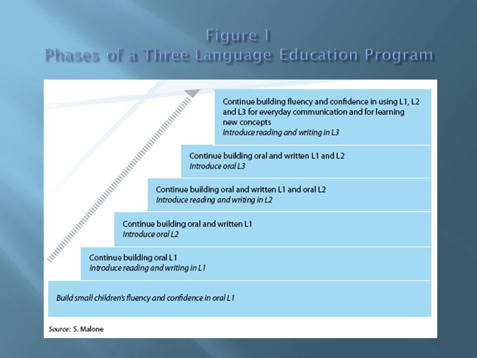 Contrary to popular belief, L1-based education may actually cost less than a system that is based on L2.
