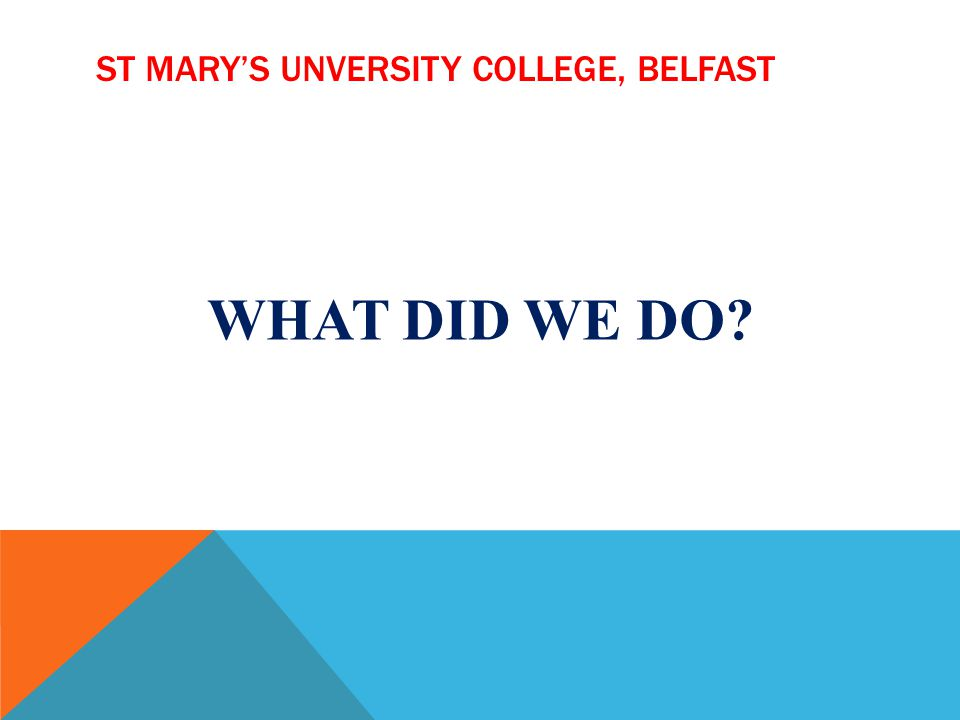 ST MARYS UNVERSITY COLLEGE, BELFAST WHAT DID WE DO?