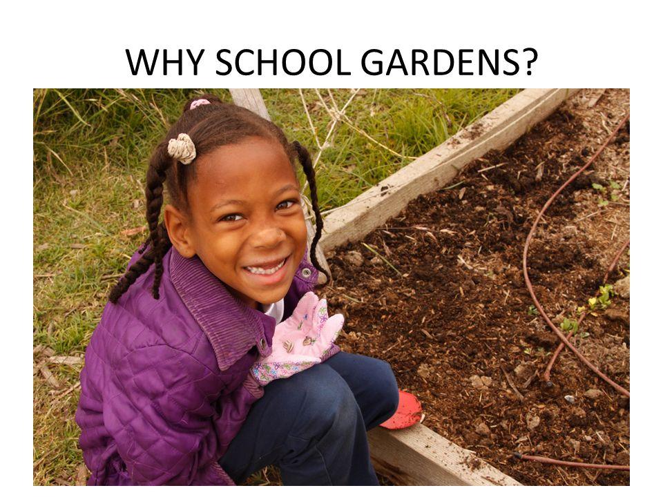 WHY SCHOOL GARDENS