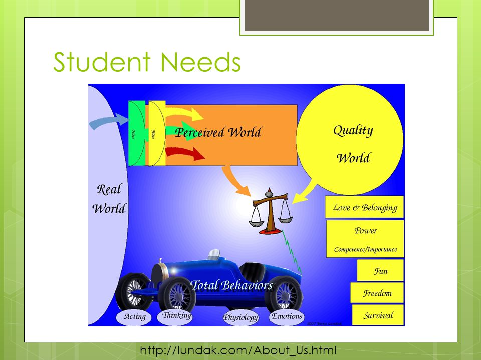 Student Needs http://lundak.com/About_Us.html