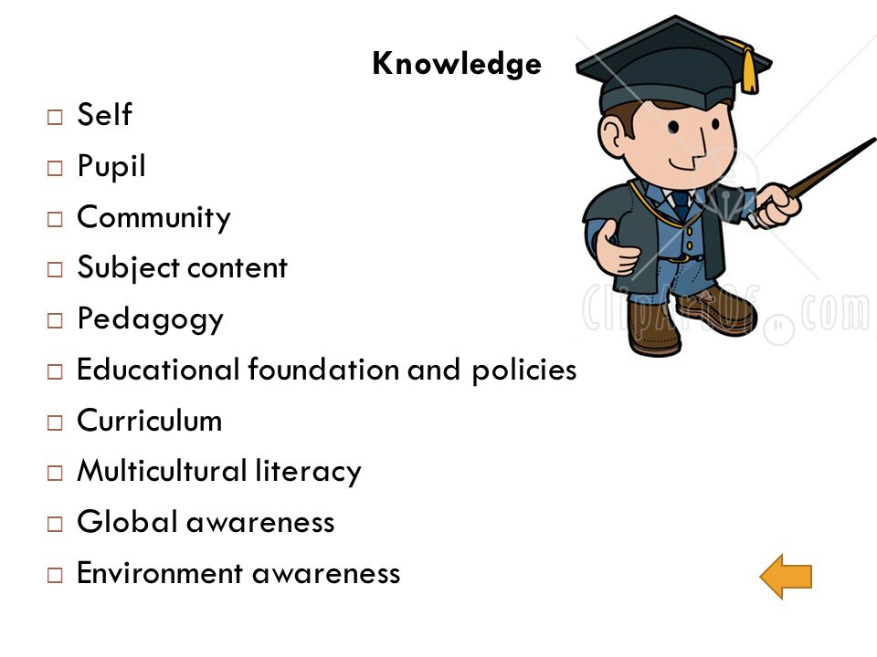 Knowledge Self Pupil Community Subject content Pedagogy Educational foundation and policies Curriculum Multicultural literacy Global awareness Environ
