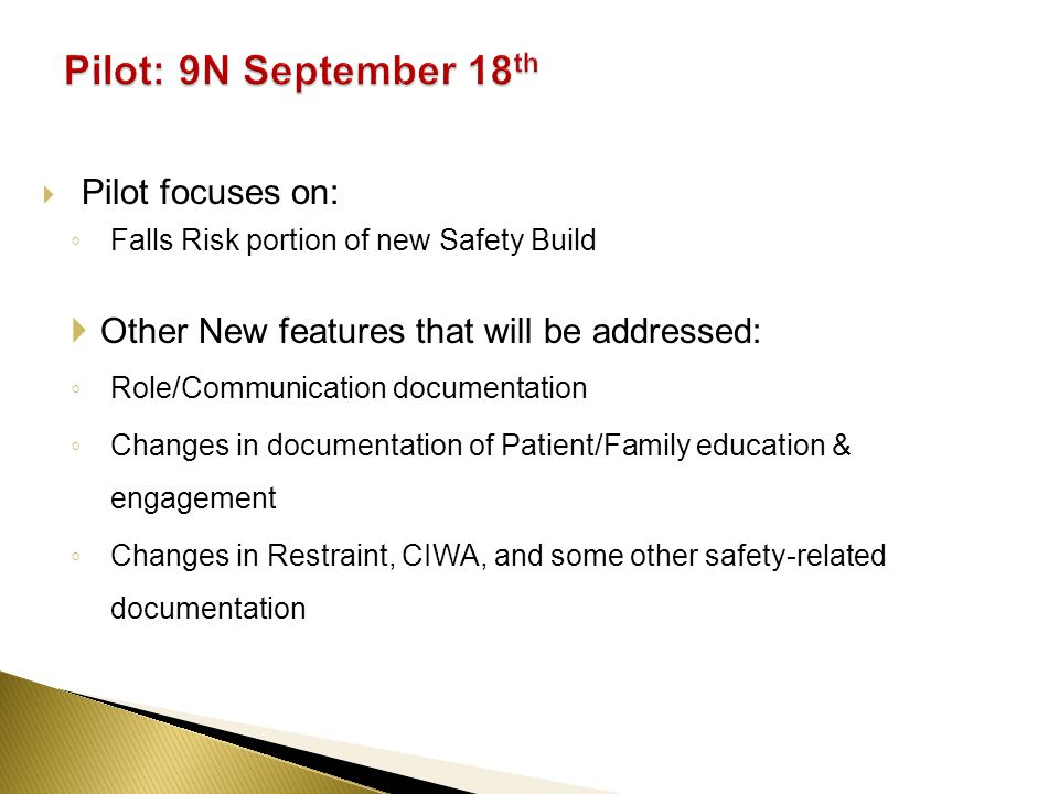 Pilot focuses on: Falls Risk portion of new Safety Build Other New features that will be addressed: Role/Communication documentation Changes in documentation of Patient/Family education & engagement Changes in Restraint, CIWA, and some other safety-related documentation