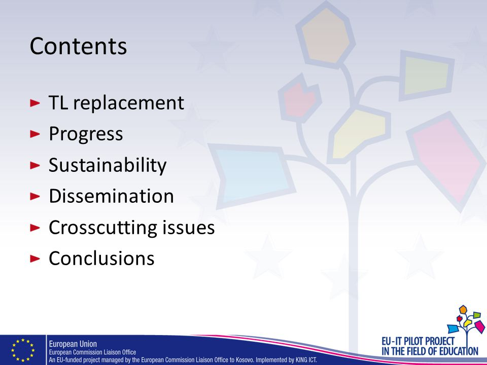 Contents TL replacement Progress Sustainability Dissemination Crosscutting issues Conclusions