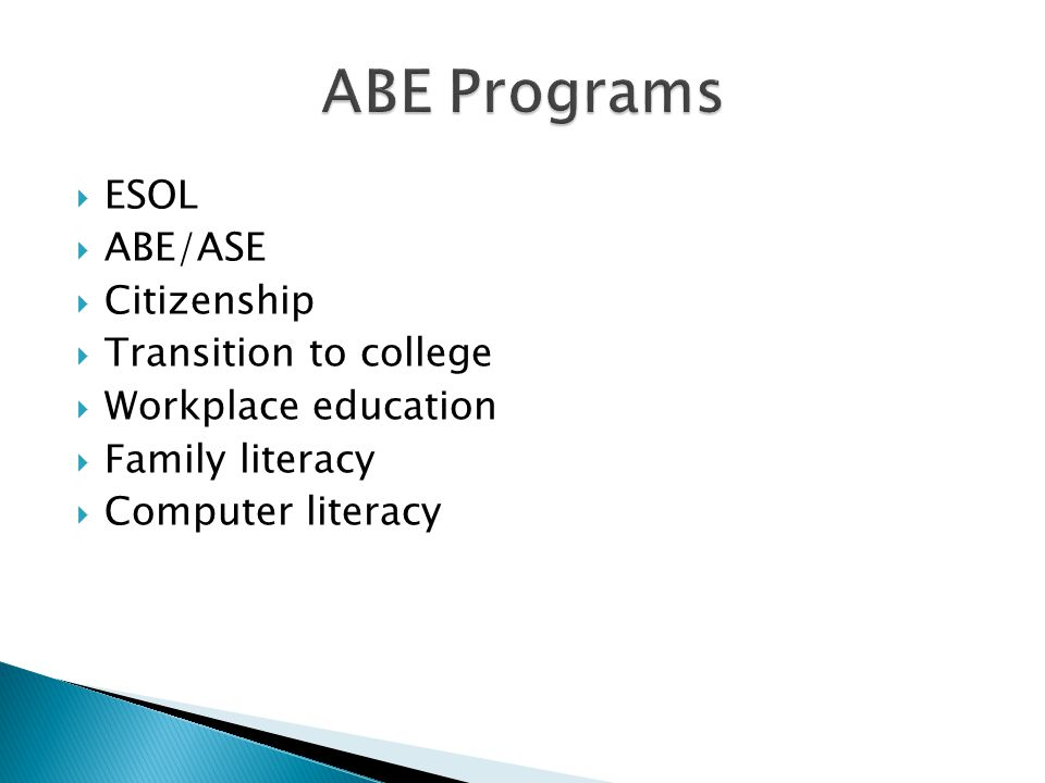 ESOL ABE/ASE Citizenship Transition to college Workplace education Family literacy Computer literacy