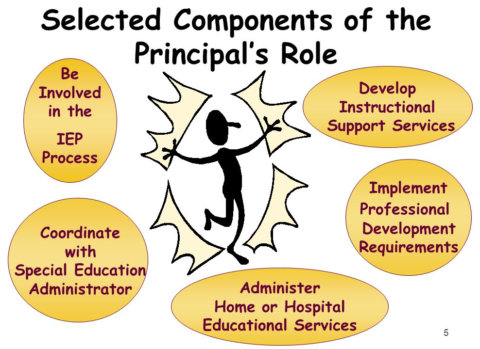 5 Coordinate with Special Education Administrator Be Involved in the IEP Process Develop Instructional Support Services Implement Professional Develop