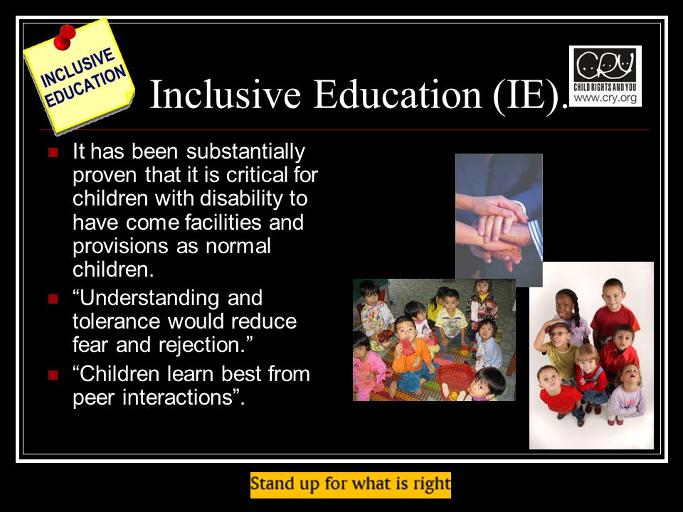 Inclusive Education (IE).