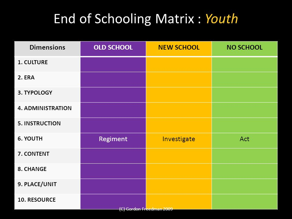 End of Schooling Matrix : Youth DimensionsOLD SCHOOLNEW SCHOOLNO SCHOOL 1.