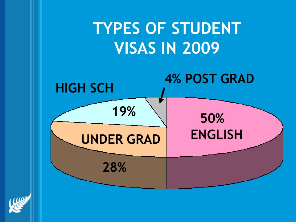 TYPES OF STUDENT VISAS IN 2009 ENGLISH 50% UNDER GRAD 28% HIGH SCH 19% 4% POST GRAD