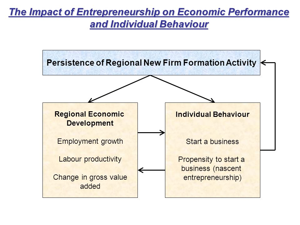 The Impact of Entrepreneurship on Economic Performance and Individual Behaviour Persistence of Regional New Firm Formation Activity Regional Economic Development Employment growth Labour productivity Change in gross value added Individual Behaviour Start a business Propensity to start a business (nascent entrepreneurship)