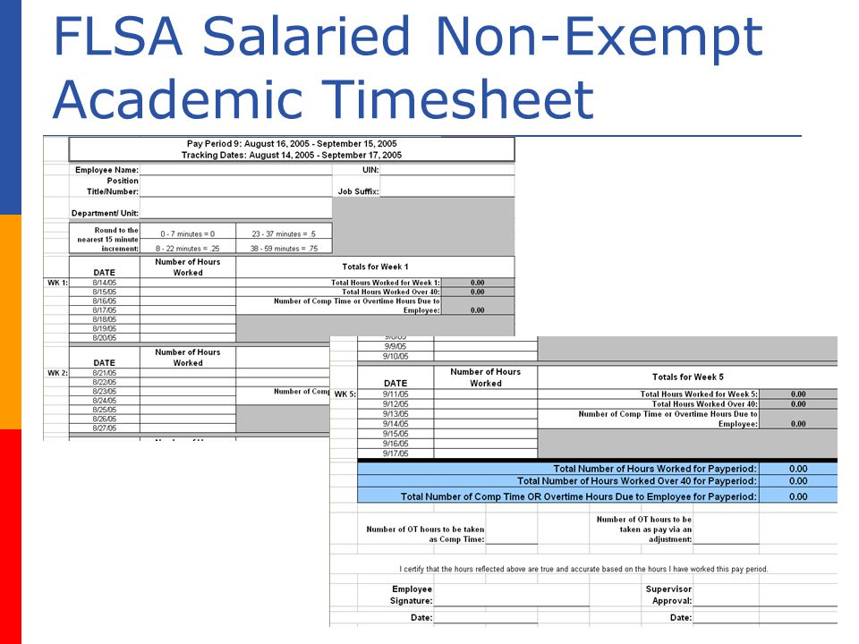 FLSA Salaried Non-Exempt Academic Timesheet