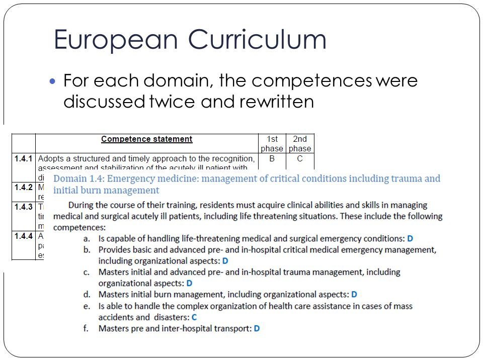European Curriculum For each domain, the competences were discussed twice and rewritten