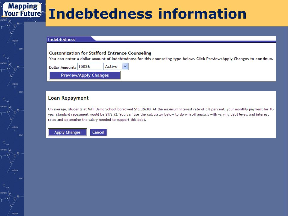 Indebtedness information