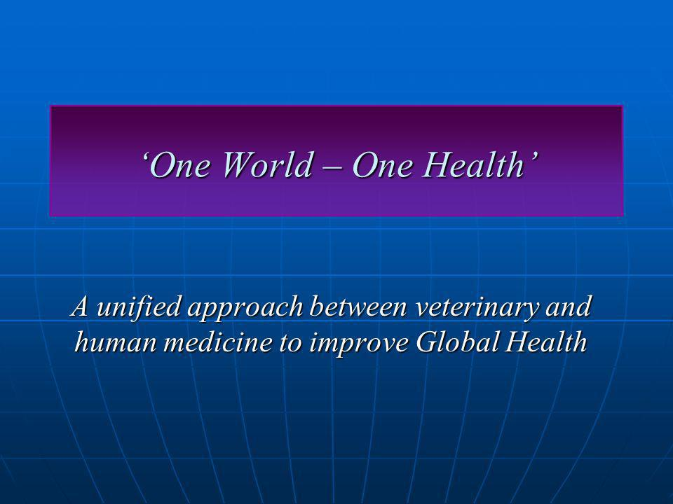 One World – One Health A unified approach between veterinary and human medicine to improve Global Health