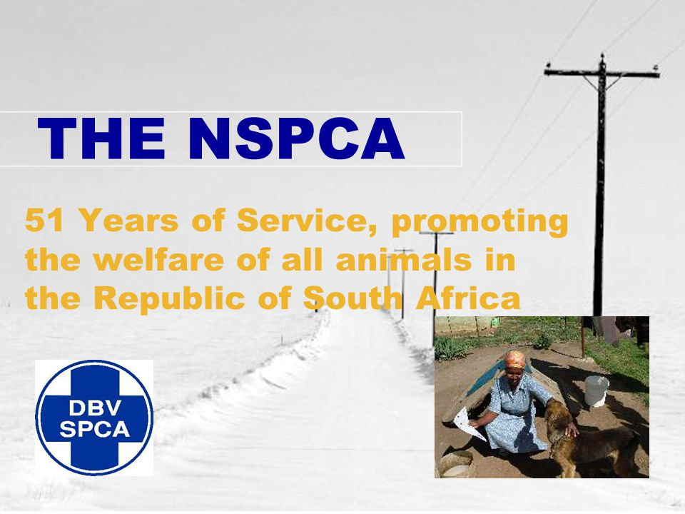 THE NSPCA 51 Years of Service, promoting the welfare of all animals in the Republic of South Africa