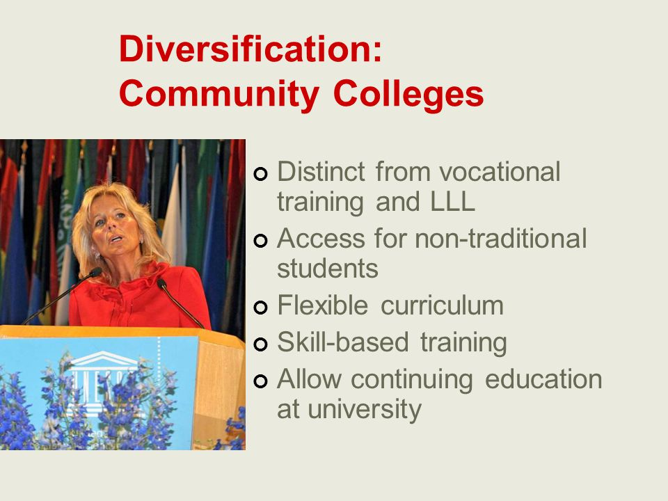 Diversification: Community Colleges Distinct from vocational training and LLL Access for non-traditional students Flexible curriculum Skill-based trai