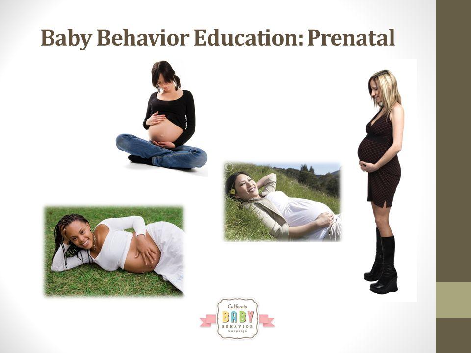Baby Behavior Education: Prenatal