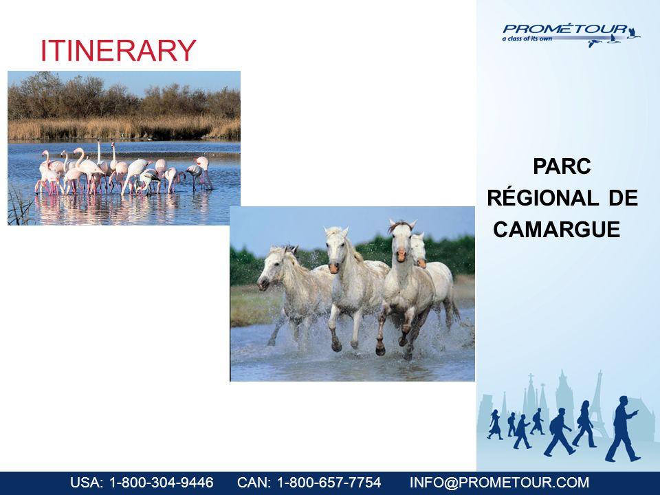 USA: 1-800-304-9446 CAN: 1-800-657-7754 INFO@PROMETOUR.COM ITINERARY PARC RÉGIONAL DE CAMARGUE