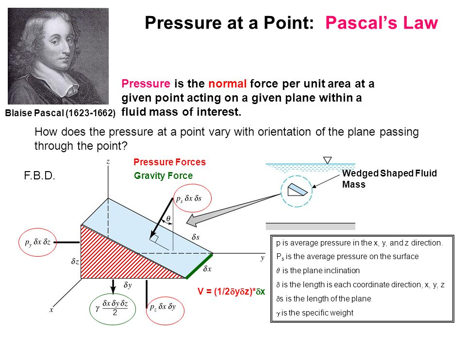 For simplicity in our Free Body Diagram, the x-pressure forces cancel and do not need to be shown.