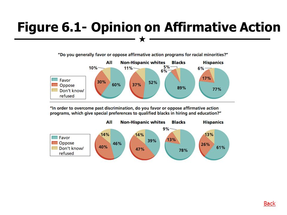 Figure 6.1- Opinion on Affirmative Action Back