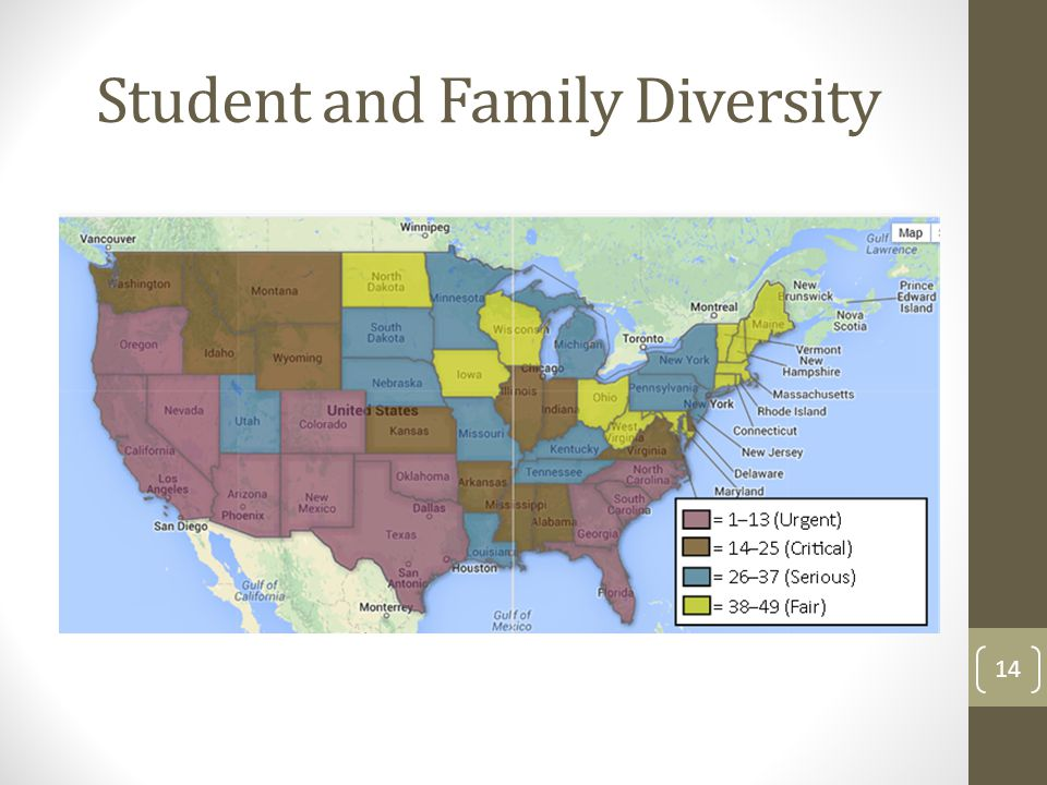 Student and Family Diversity 14
