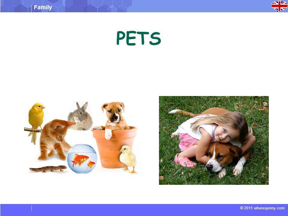 Family © 2011 wheresjenny.com PETS